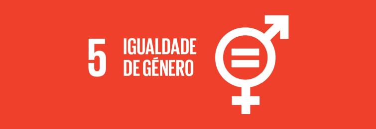 Objetivo nº 5 - Igualdade de género