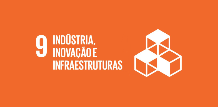 Objetivo nº 9 - Indústria, inovação e infraestruturas