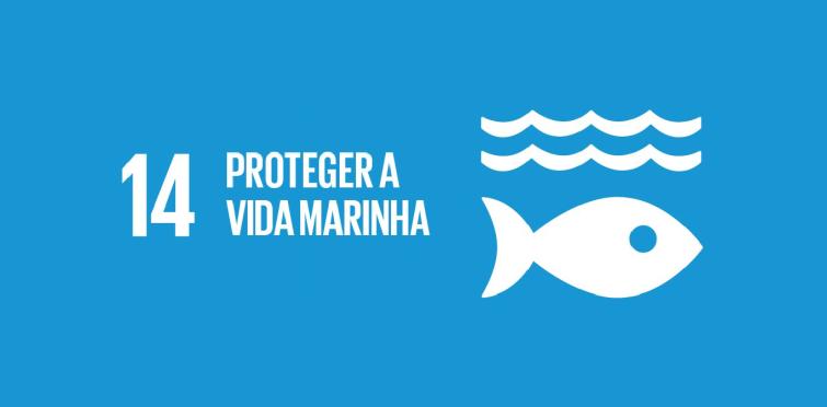 Objetivo nº 11 - Proteger a vida marinha